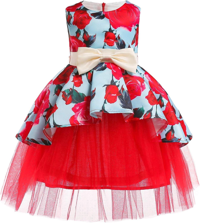 Noeud Jupe imprim/ée Flamant Rose,Blue,100# Robe en Maille Robe YRE Fille Princesse gar/çon Princesse Fan Robe Jupe