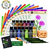 FolkArt One Stroke Donna Dewberry Flowers of the Month Let's Paint Kit