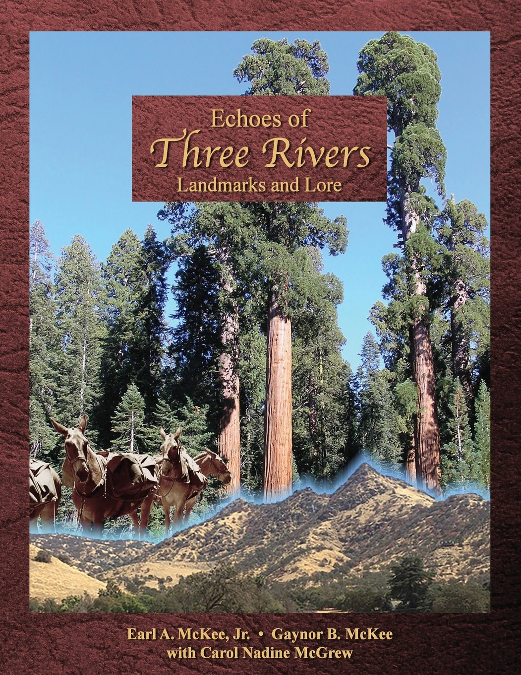 Download Echoes of Three Rivers: Landmarks and Lore ebook