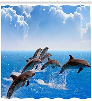 Image Unavailable Not Available For Color Sea Animal Dolphin Shower Curtains Hooks