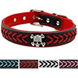 Vcalabashor™Braided Leather Dog Collars / Cool Skull Studded / Stylish Braided / Soft Padded Pet Collar / Fits Small Medium Large Breeds