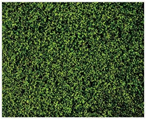 Allenjoy 10x8ft Nature Green Lawn Leaves Printed Backdrop for Photography Grass Floordrop Picture Background Spring Party Ground Decor Outdoorsy Theme Newborn Baby Shower Lover Wedding Photo Props