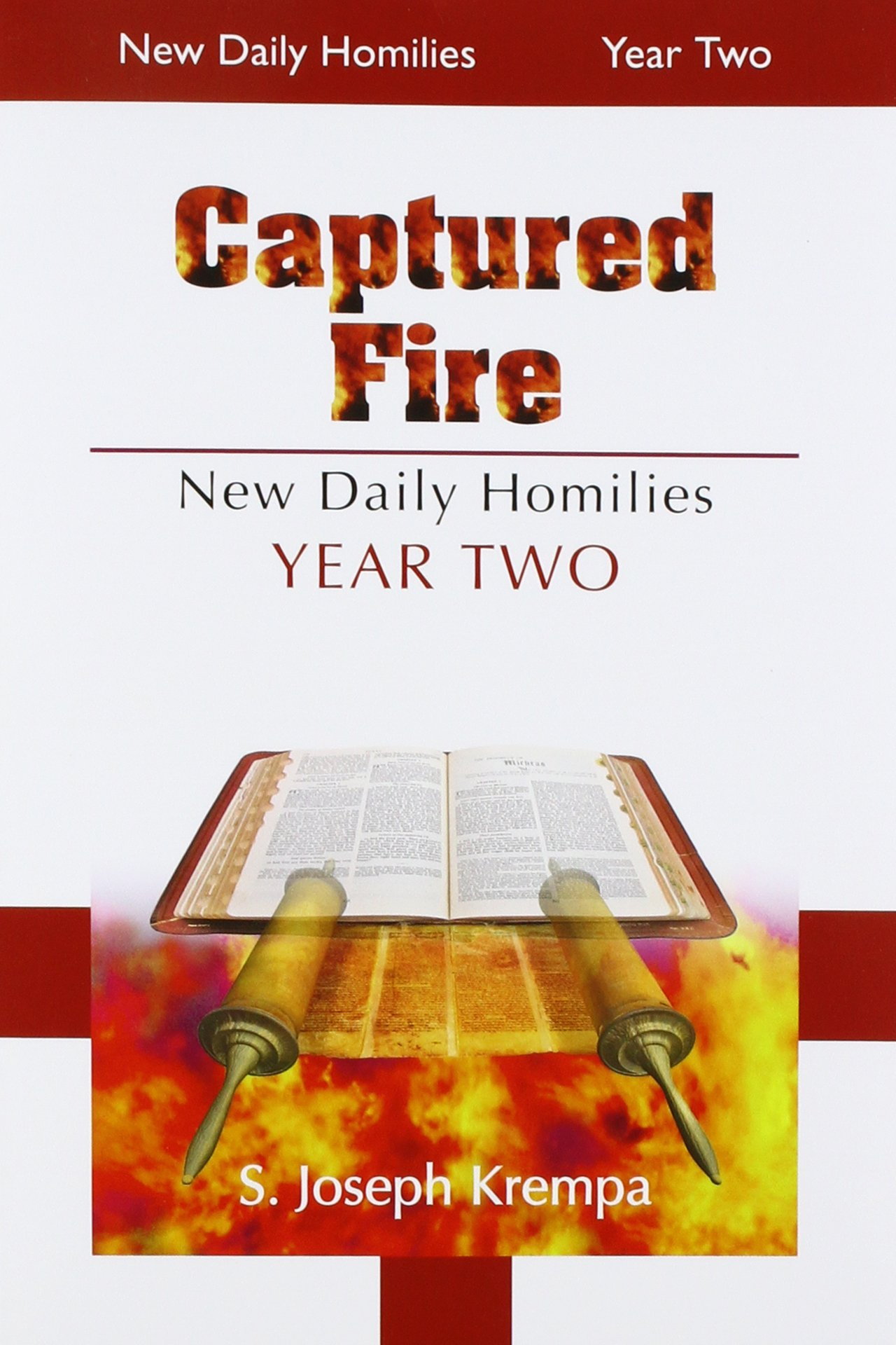 Captured Fire: New Daily Homilies - Year Two PDF