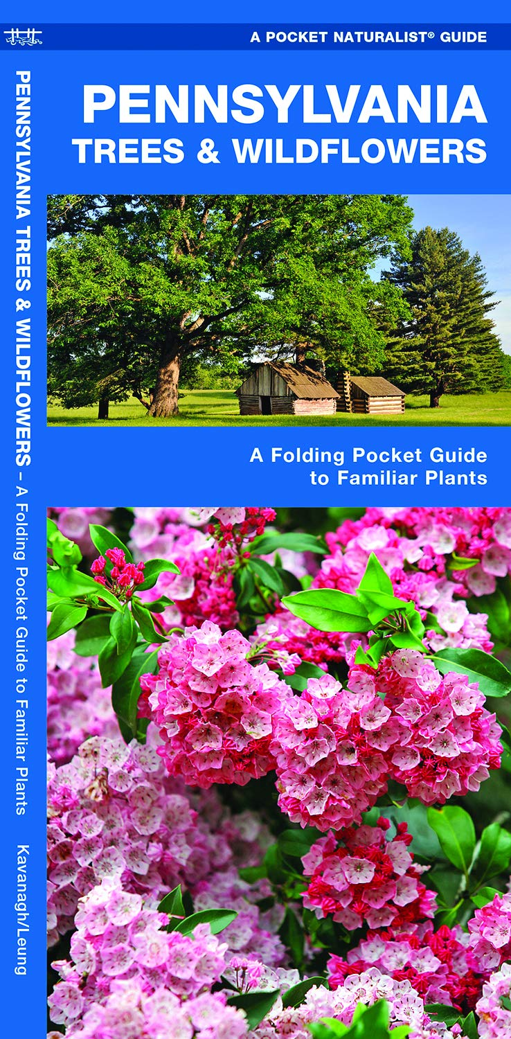 Pennsylvania Trees & Wildflowers: A Folding Pocket Guide to Familiar Plants  (Pocket Naturalist Guides): James Kavanagh, Waterford Press, Raymond Leung:  ...