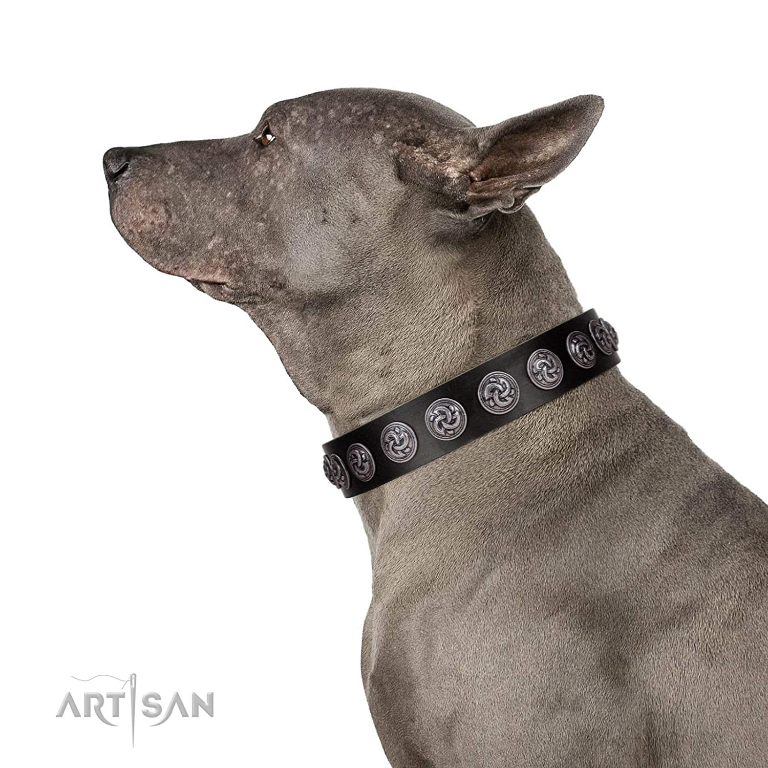 Fits for 26 inch (65cm) dog's neck size FDT Artisan 26 inch Black Raven Handmade Designer Black Leather Dog Collar with Silver-Like Adornments 1 1 2 inch (40 cm) Wide Gift Box Included