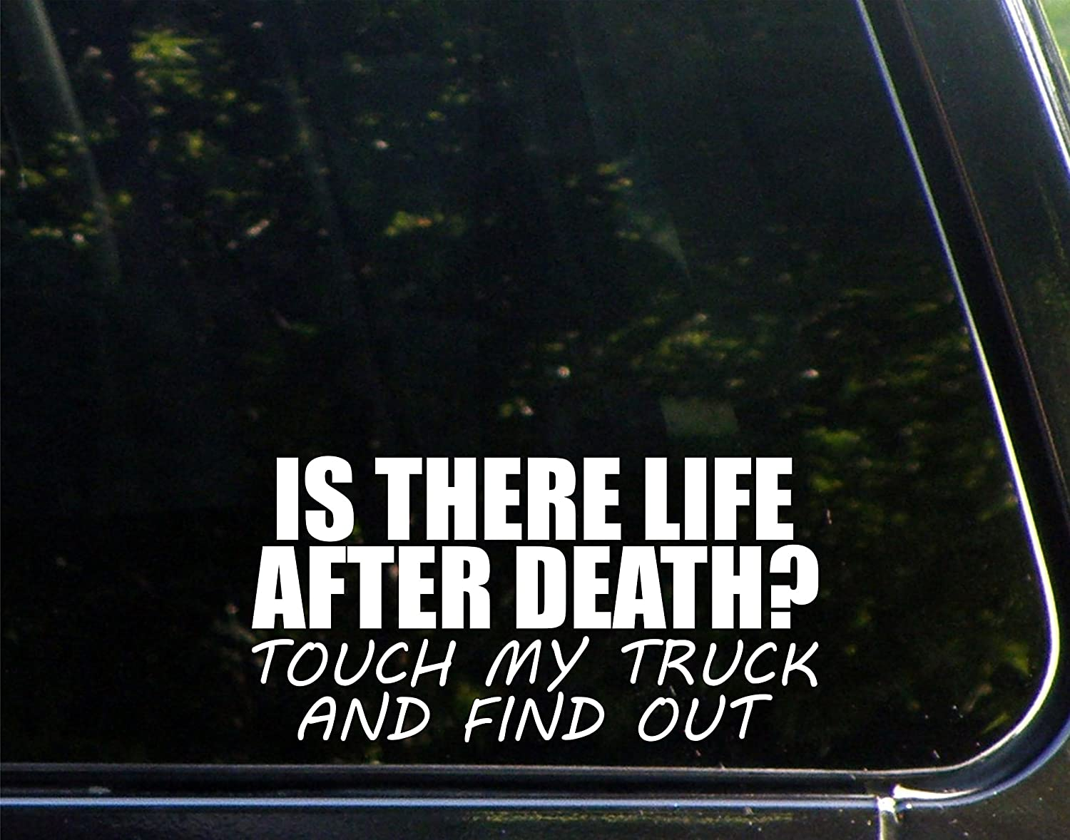 Amazoncom IS THERE LIFE AFTER DEATH Touch My Truck And Find Out - Custom vinyl stickers chicago
