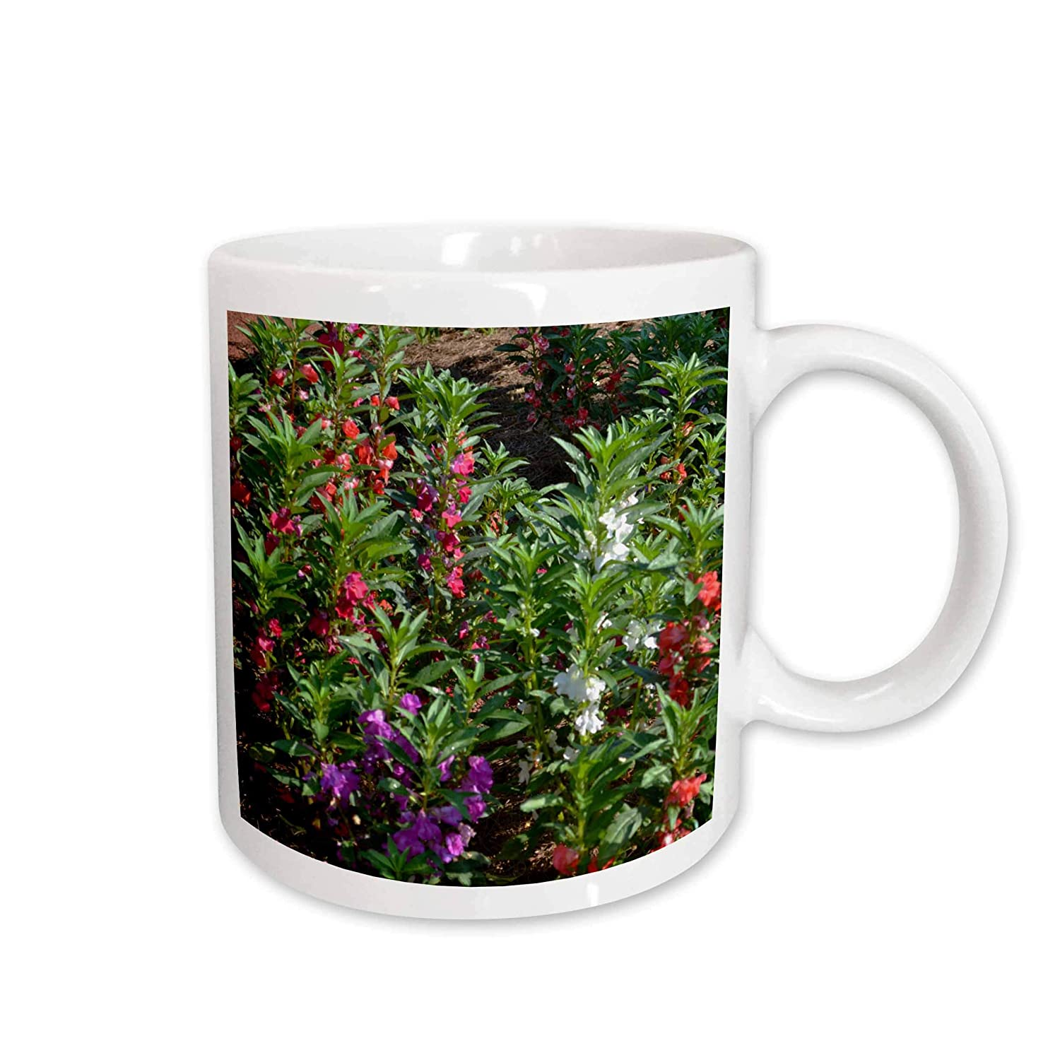 Buy 3drose Colorful Snapdragons In The Garden Ceramic Mug 15 Ounce Online At Low Prices In India Amazon In