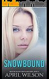 Snowbound - a novella: (McIntyre Security Bodyguard Series - Book 10)