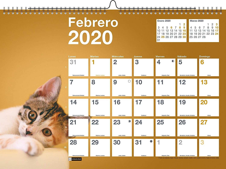 Miquelrius 28060 - Calendario de Pared A3 para escribir Perros & Gatos 2020 Castellano