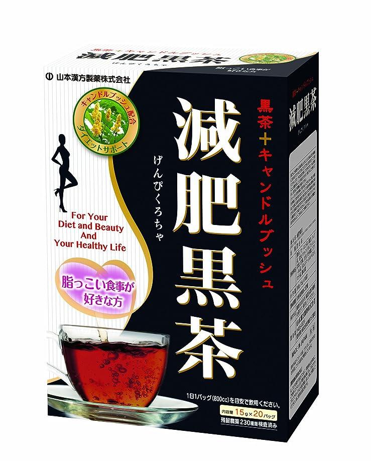 ファックス郊外チームDELI-SHAKE (デリシェイク)24袋入り(各4袋) 6種のフレーバー ストロベリー ブルーベリー ココア 抹茶ラテ カフェモカ バナナミルク
