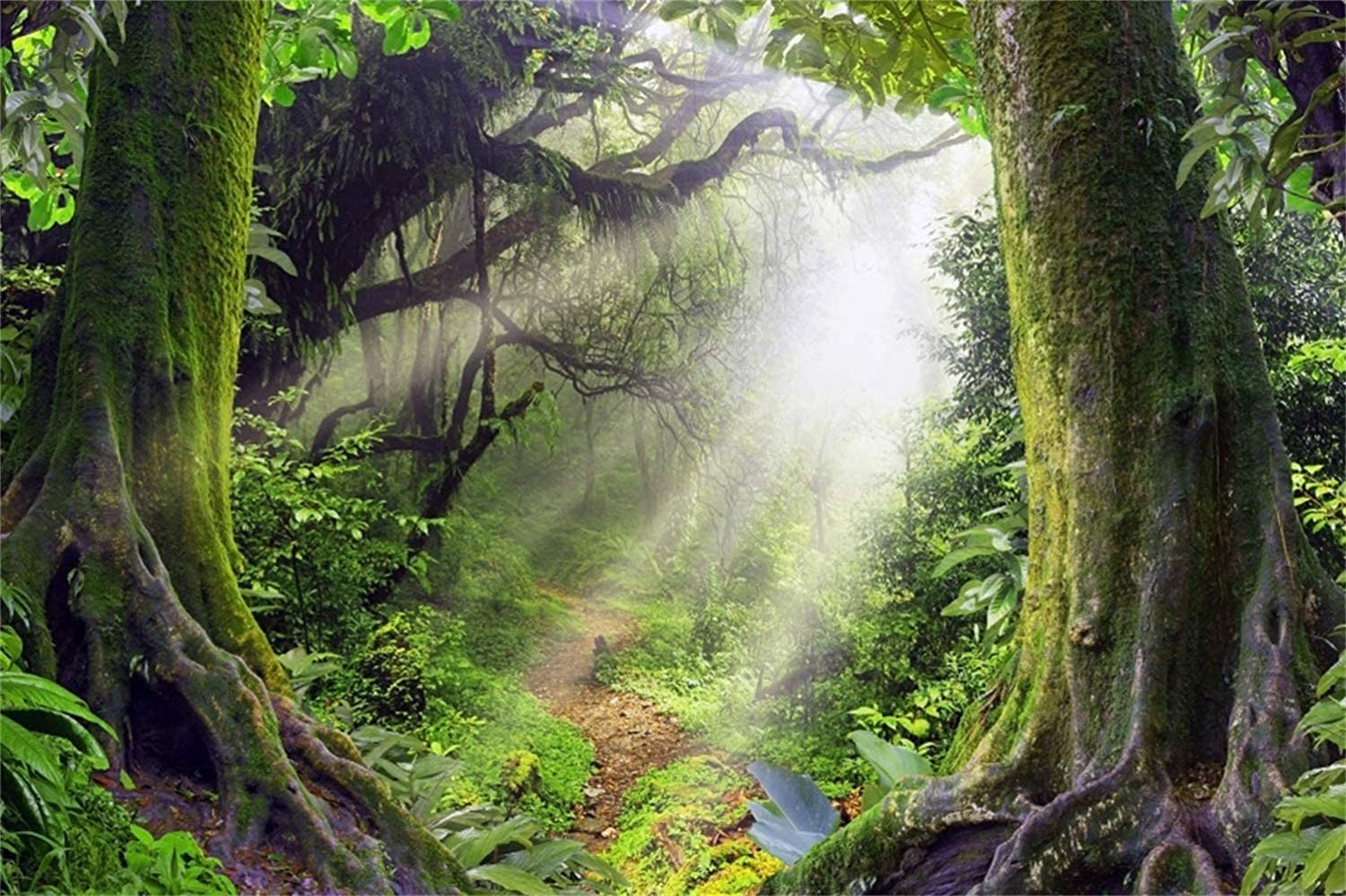 10x6.5ft Fairytale Dreamy Jungle Forest Backdrop Polyester Lush Forest Mossy Trees Sunshine Light Beam Photography Background Baby 1st Birthday Party Banner Child Baby Portrait Shoot Summer Camp