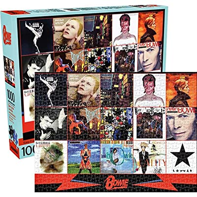 David Bowie Puzzle: Toys & Games