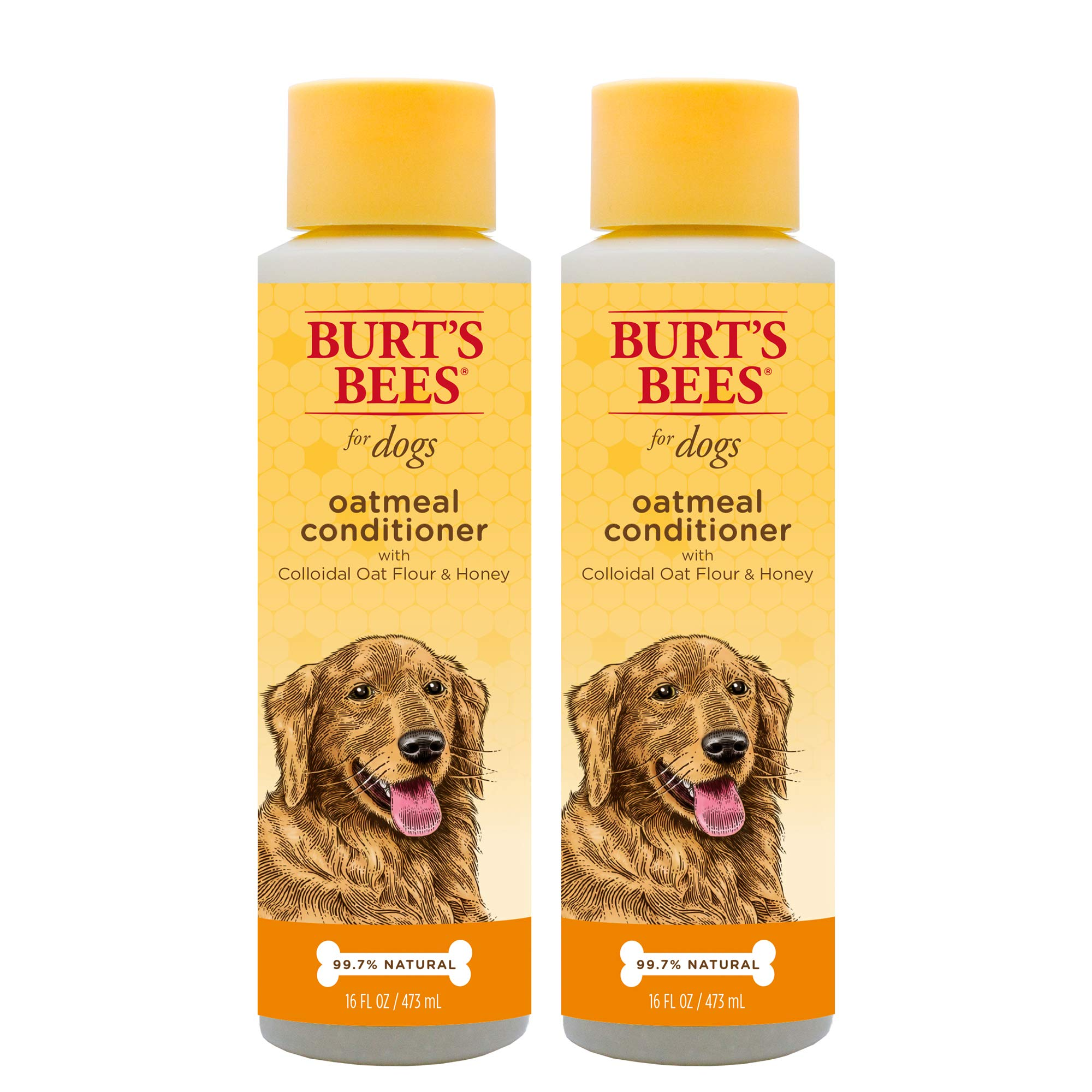 Burt's Bees for Dogs Natural Oatmeal Conditioner with Colloidal Oat Flour and Honey | Puppy and Dog Shampoo, 10 Ounces - 2 Pack by Burt's Bees for Pets