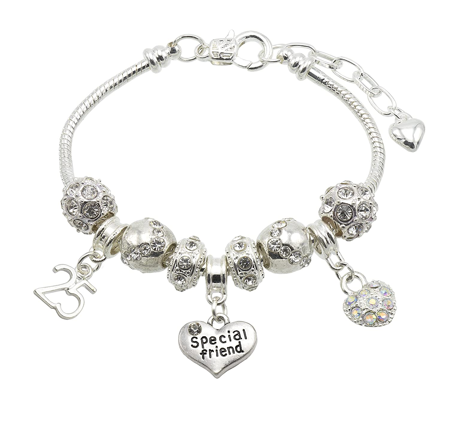 Special Friend Birthday Charm Bracelet with Gift Box - Ages Available 13, 15, 16, 18, 20, 21, 25, 30, 35, 40, 45 & 50 45 & 50 (13th) Jewellery Hut BR#cmk001specialFriend-13th