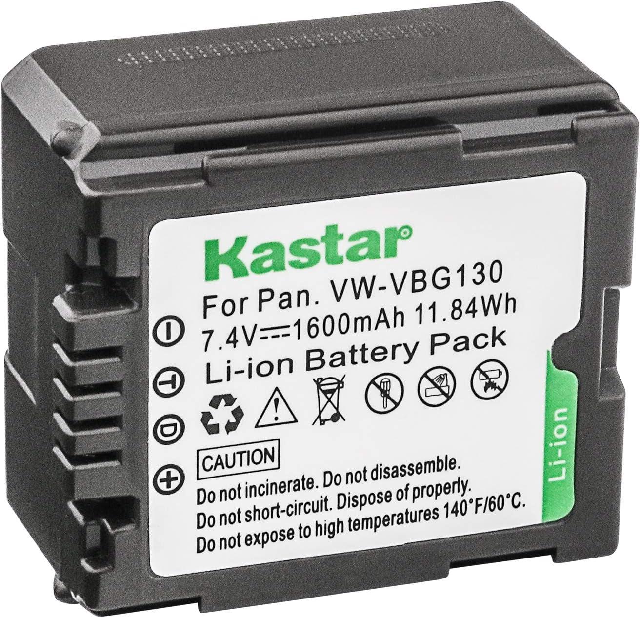 AKKU LADEGERÄT MICRO USB für PANASONIC VW-VBG130 VW-VBG070 VW-VBG260