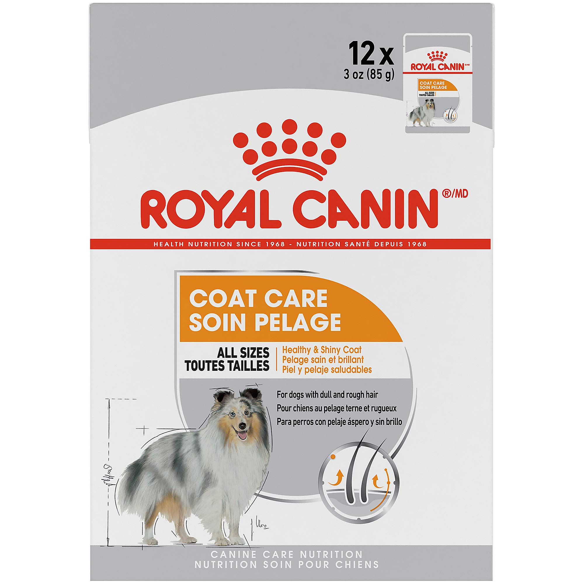 Royal Canin Canine Care Nutrition Coat Care Loaf in Gravy Dog Food, 3 Ounce Pouch (Pack of 12) by Royal Canin