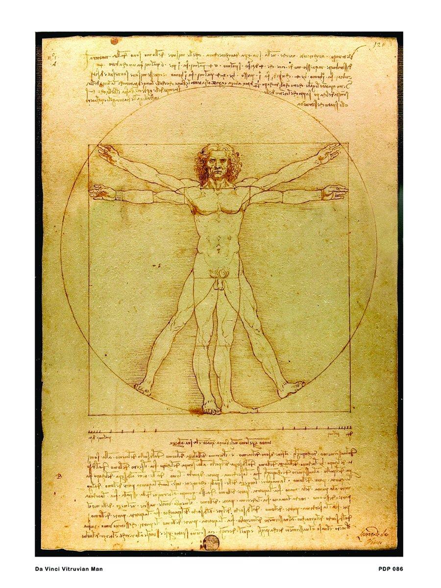 onthewall da Vinci Uomo Vitruviano 30 x 40 cm Poster Stampa Artistica PDP 086