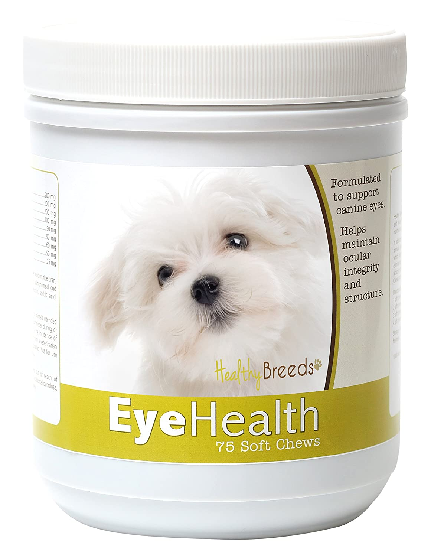 Dog Eye Structure | www.topsimages.com