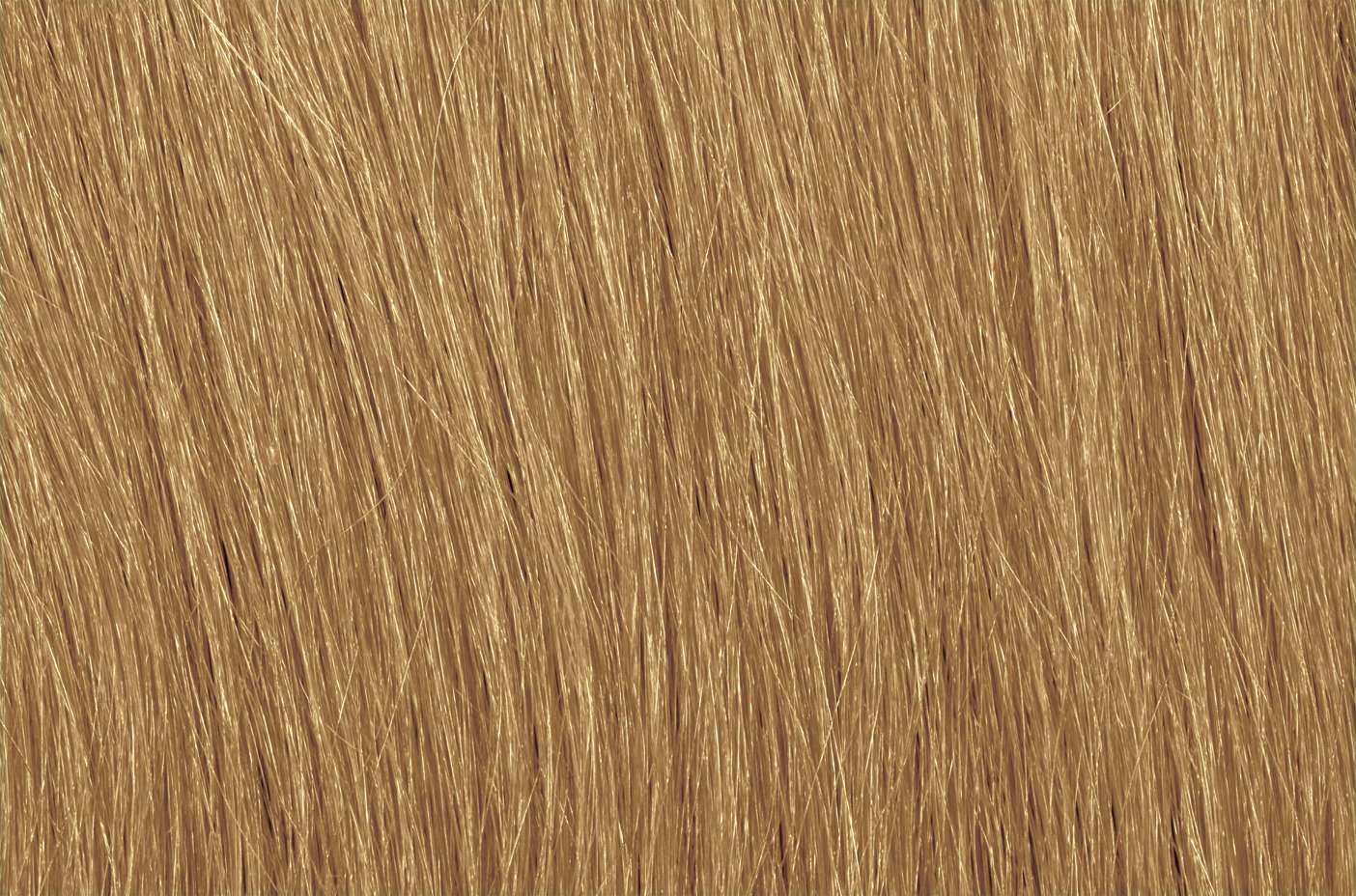 HairMarker by ColorMark (Medium Blonde) by HairMarker (Image #3)