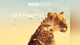 Serengeti - Staffel 1