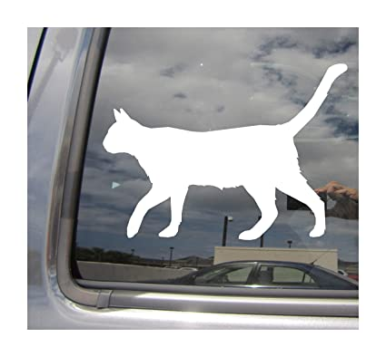 Amazon Com Right Now Decals Strolling Cat Kitty Pussy Cars Trucks