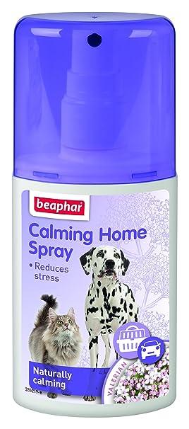 Beaphar Spray Relajante para Perros y Gatos, 125 ML: Amazon.es: Productos para mascotas