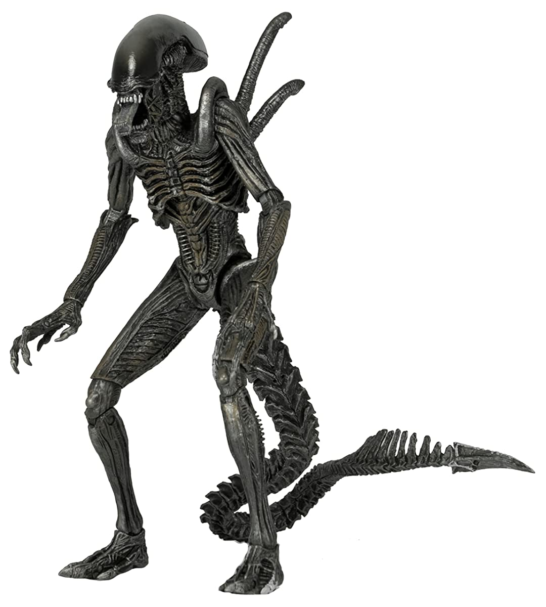 "NECA Aliens Series 7 AvP Warrior Action Figure (7"" Scale)"