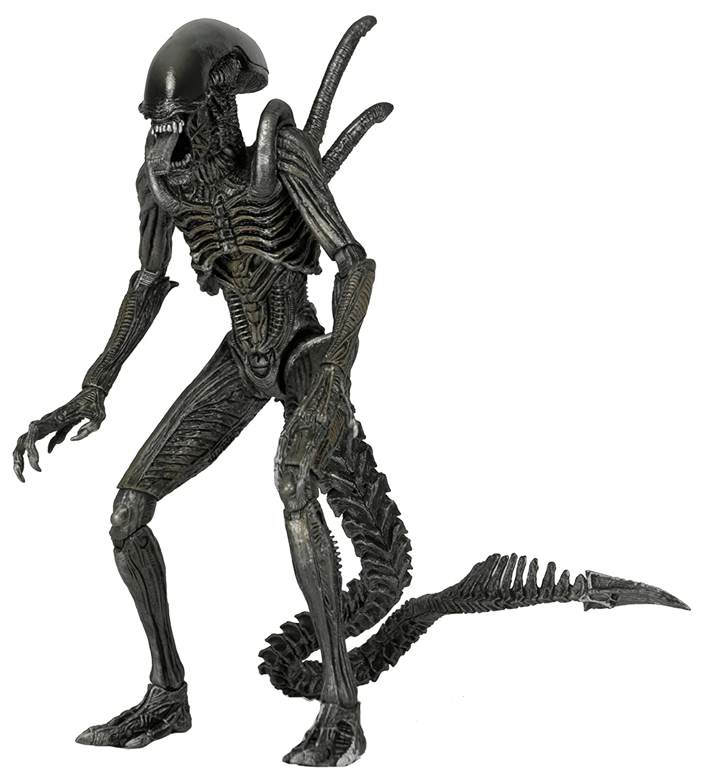Alien: Alien vs PROTator Actionfigur Serie 7 Warrior Alien NECA