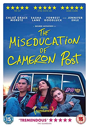 The Miseducation Of Cameron Post Dvd Amazon Co Uk Chloe Grace