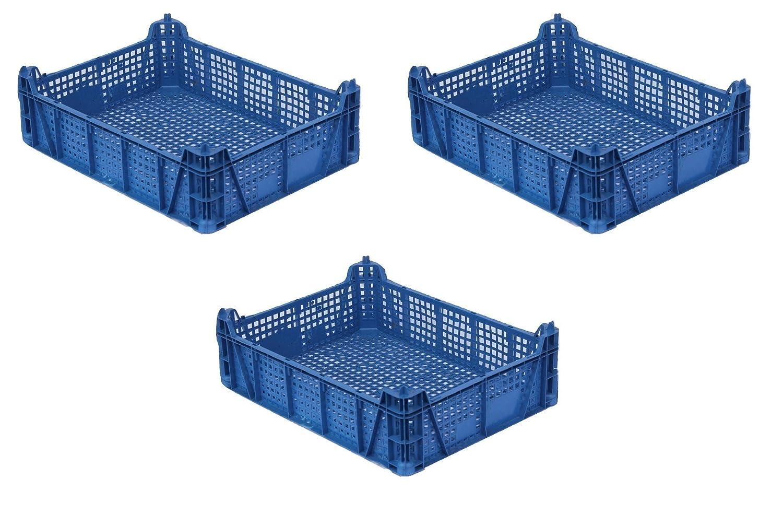 3 x caja de frutas y verduras, caja de champiñón, color azul oscuro, apilable, 29 x 39 x 12 cm, tarro Caja, caja de transporte: Amazon.es: Hogar