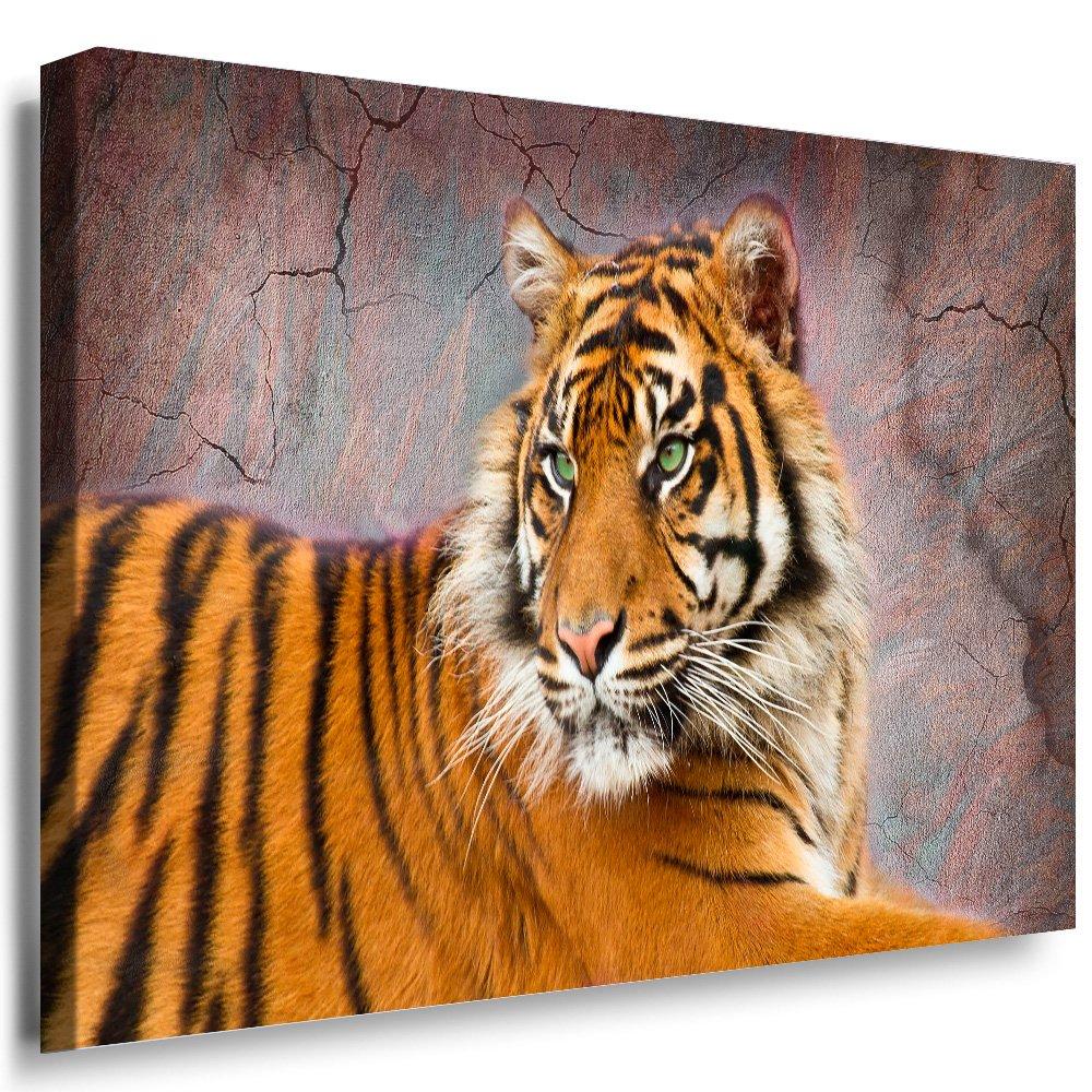 Julia-art Leinwandbilder - Tiere, Katzen, Katzen, Katzen, Tiger Bild 1 teilig - 100 mal 70 cm Leinwand auf Rahmen - sofort aufhängbar   Wandbild XXL - Kunstdrucke QN.73-5 d539db