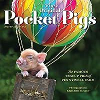 Image for The Original Pocket Pigs Mini Wall Calendar 2021