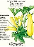 Cube of Butter Summer Squash - 10 Seeds - Botanical Interests