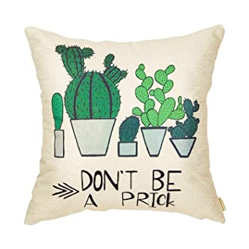 Amazon.com: heigudan Dont Be a Prick Cactus - Funda de ...