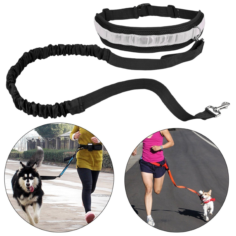 Cinturón Elástico Running Dog Leash Plomo Deportes Jogging Walking ...