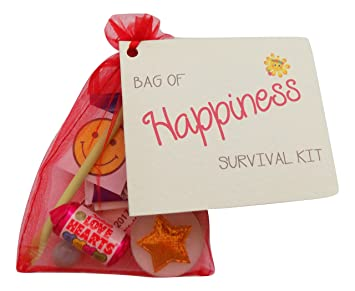 a little bag of happiness novelty survival gift birthday family