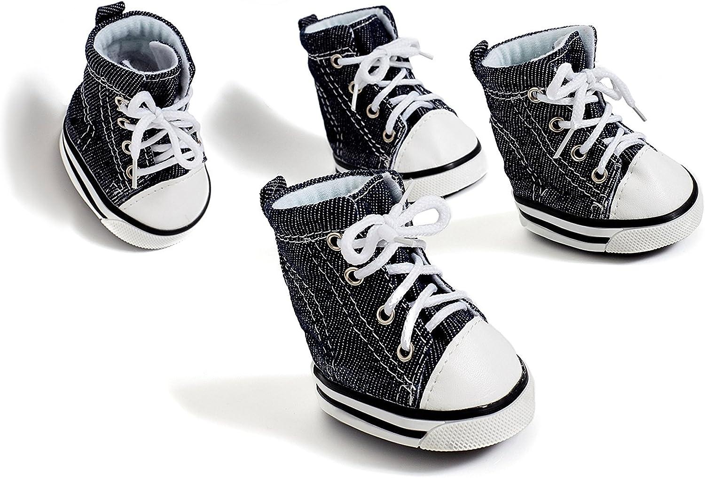 converse dog shoes