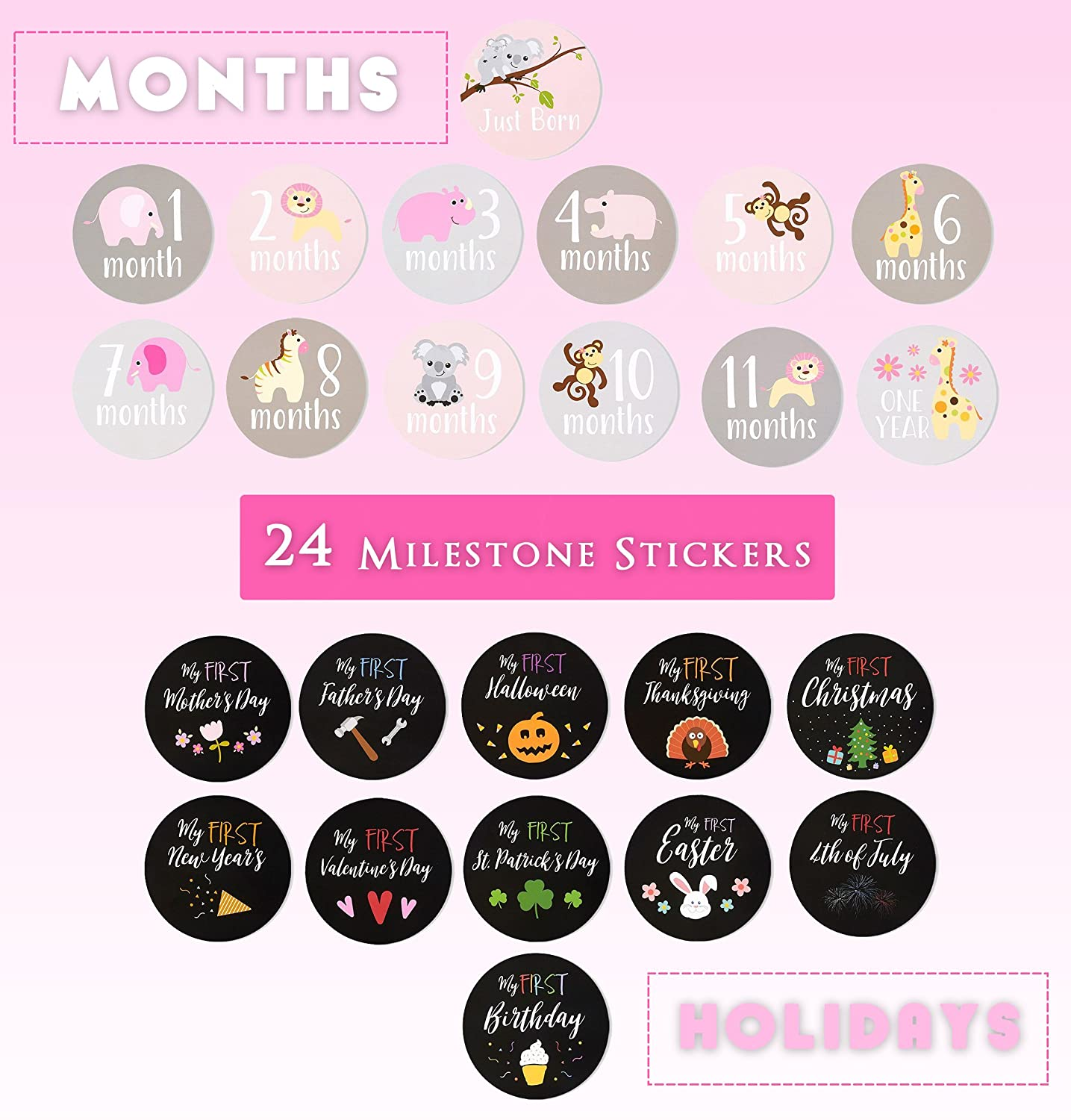 Best Paper Greetings 24 Count Baby Milestone Stickers Girls - Baby Monthly Stickers Baby Scrapbook, Keepsake Journal Baby Pictures