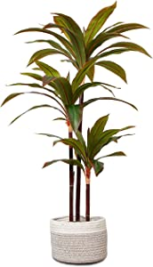 """Elpidan- Artificial Dracaena Plant Tree Decor,44"""" corn stalk dracaena silk plant, Tropical Dracaena Fake plant, House Plants 