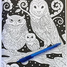 Amazoncom Fantasia Adult Coloring Book 9780997480764