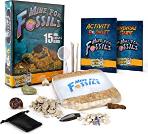 Discover with Dr. Cool Mine for Fossils Dig Kit – Excavate 15 Real Fossil Specimens Including Dinosaur Bones, Mosasaur & Shark Teeth - Great STEM Fossil Kit for Boys and Girls Interested in Dinosaurs