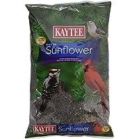 Kaytee Wild Bird Food Black Oil Sunflower - 5 Lb