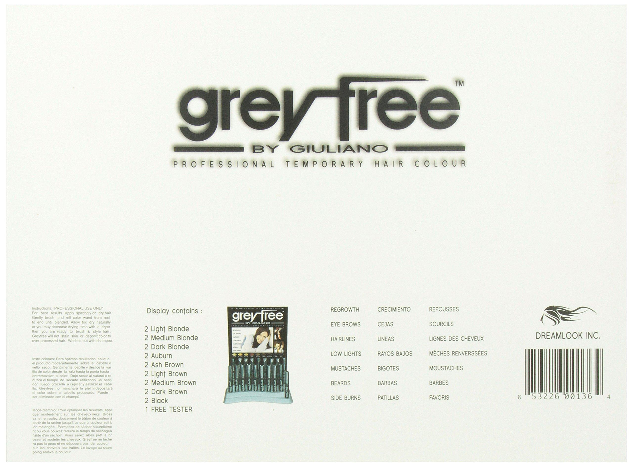 Greyfree Professional Temprorary Hair Color 18 Pieces Display by Greyfree (Image #3)