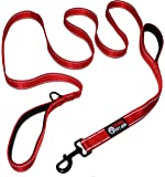 Dog Leash 2 Handles Extra Long 8ft Lead, Heavy Duty, Double Handle Greater Control Safety Training, Perfect for Large Dog or Medium Dog, Dual Padded Handles, Protect Dog in Traffic
