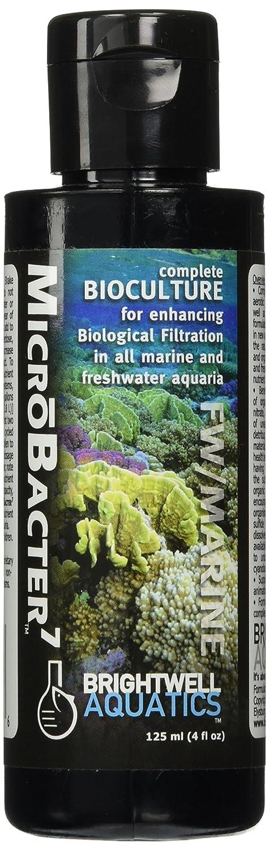 Amazon.com: Brightwell Aquatics ABABAC500 Microbacter7 ...