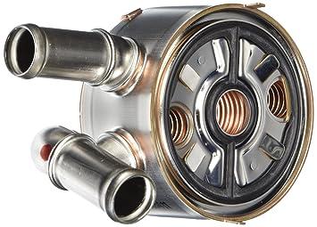 Genuine Mazda lf6 W-14 - 700 A Motor temperatura de aceite con sello: Amazon.es: Coche y moto