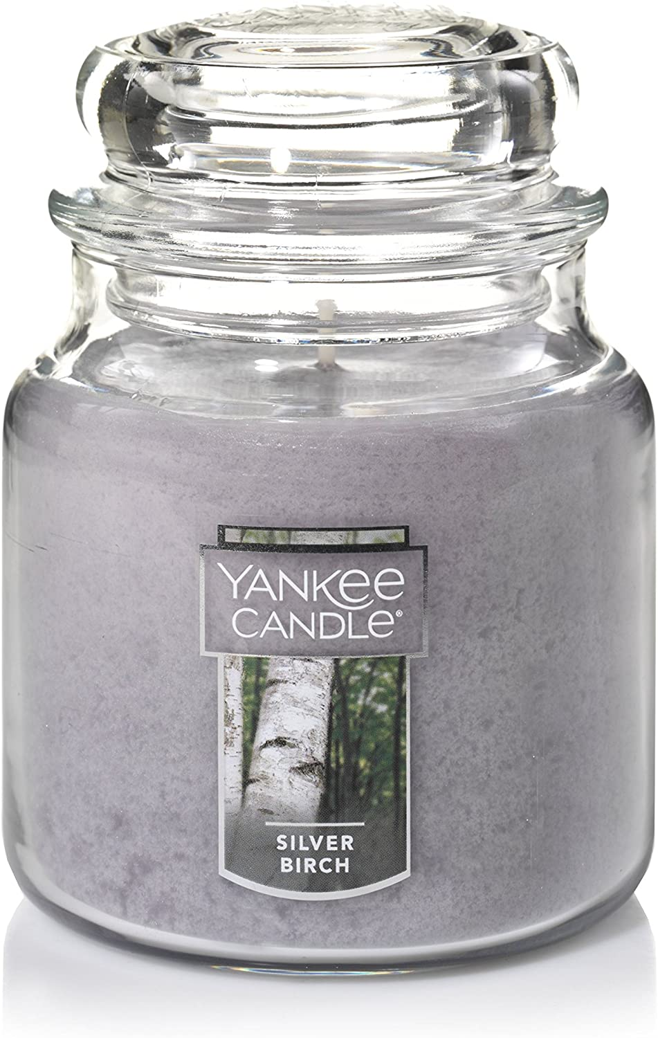 Yankee Candle Medium Jar Candle, Silver Birch