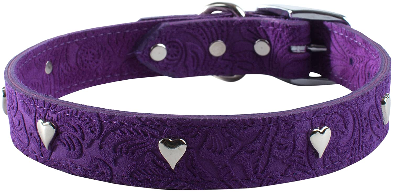 Purple 1\ Purple 1\ OmniPet Signature Leather Suede Dog Collar with Heart Ornaments, 1  x 26 , Purple