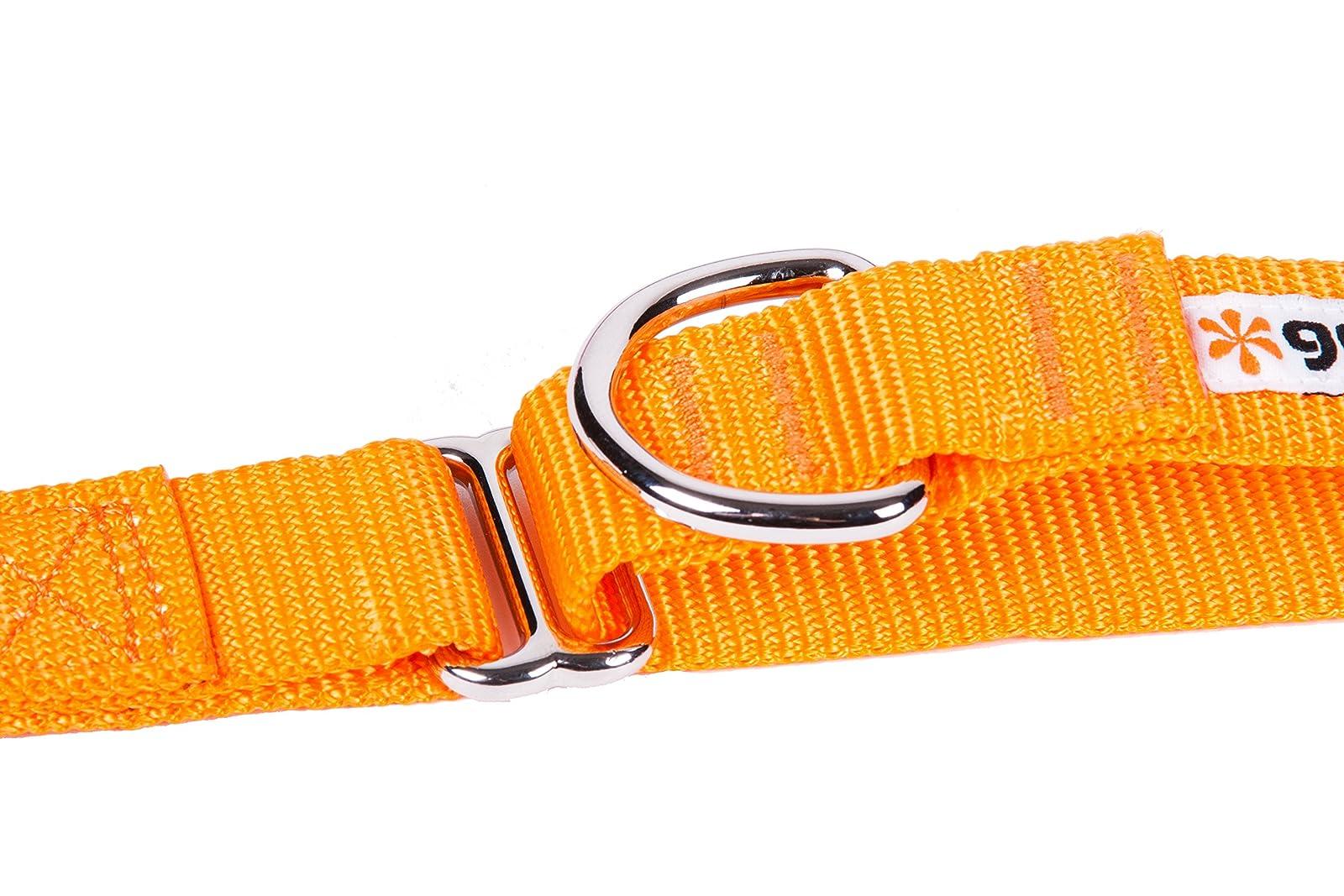 GoGo Pet Products GoGo 3/8-Inch 15113 Orange - 4