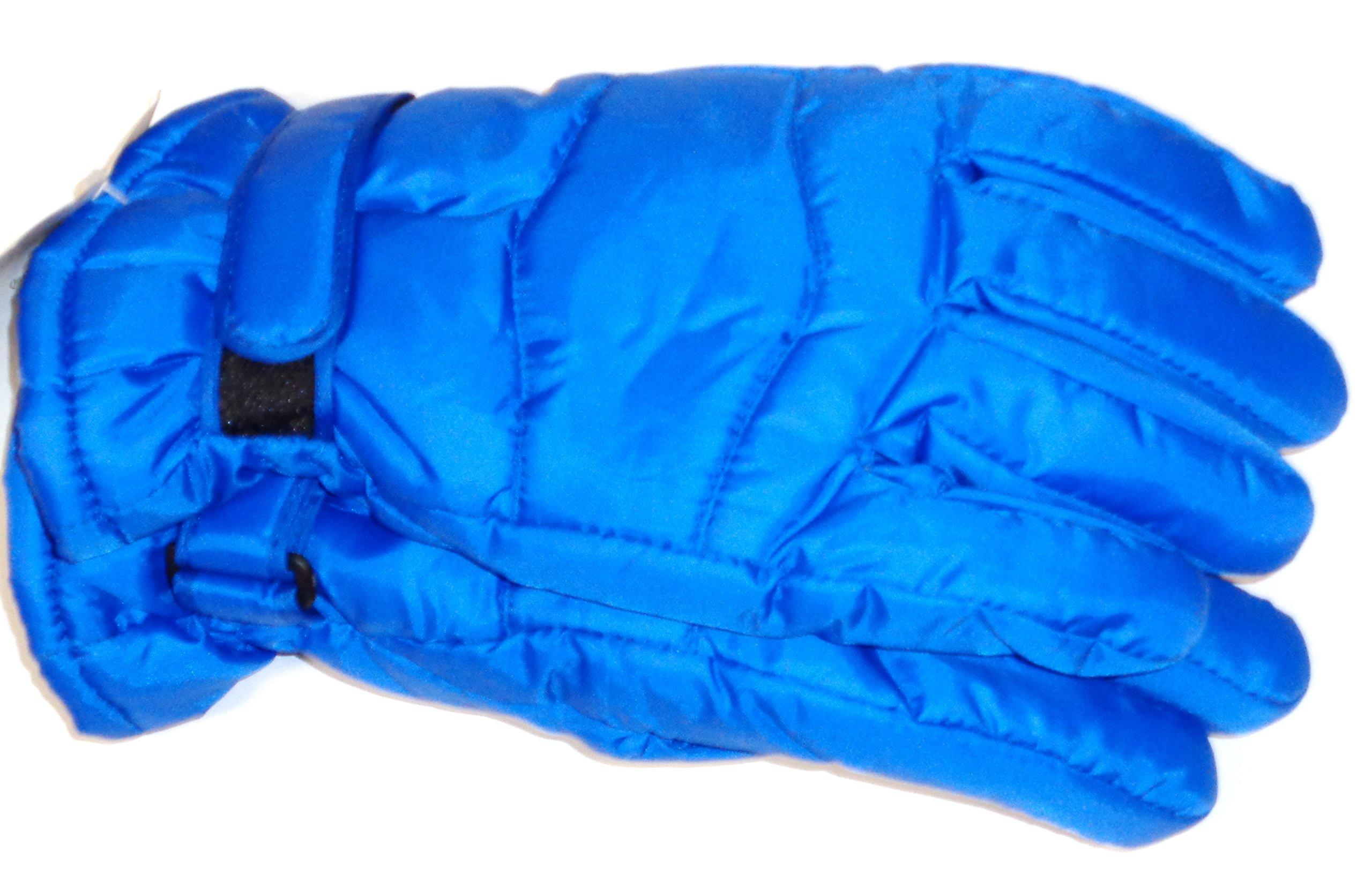 Dypel Royal Color Luxurious Looking Ski Gloves for Men Size Med